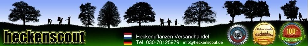 Heckenscout-Logo